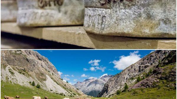 Consorzio per la tutela dei formaggi Valtellina Casera e Bitto